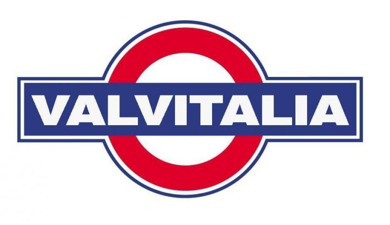 logo-valvitalia-196739